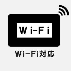 テンセンス・カスタマイズ Wi-Fi対応